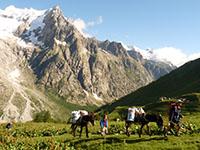 Avec un âne au pays du Mont Blanc.