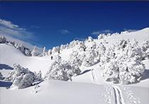 Arcanson Ski de Randonnée Nordique Jura