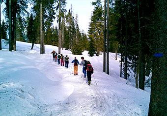 Foret noire allemagne Ski de fond itinérant